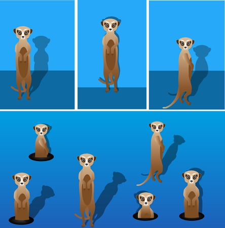 Vector meerkat with shadow on a blank background