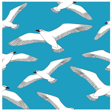 gnarled: Drawing hand seagull on a blank background. Vector illustration pattern