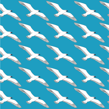 large group of animals: Drawing hand seagull on a blank background. Vector illustration pattern