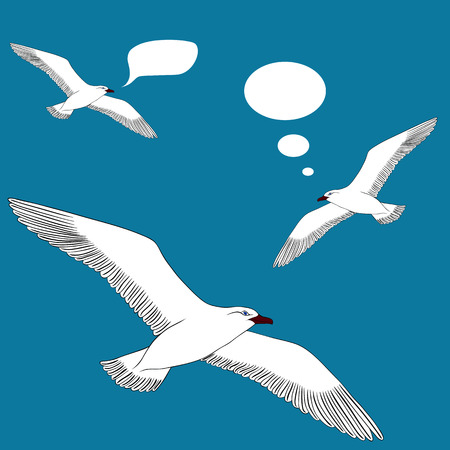 gnarled: Drawing hand seagull on a blank background. Vector illustration Illustration