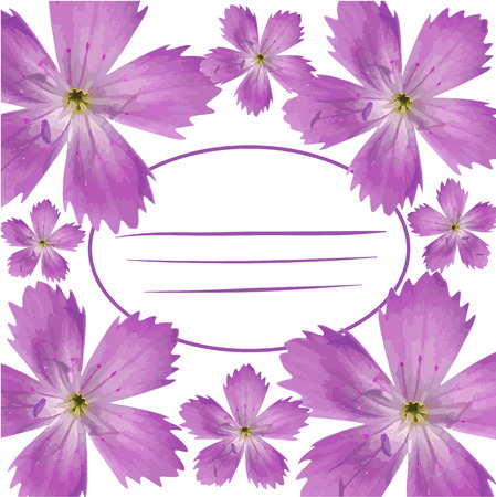 flor aislada: P�rpura de la flor, aislada en fondo blanco, ilustraci�n vectorial