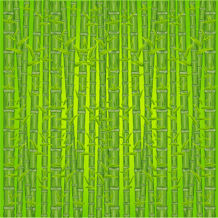 green bamboo: Green bamboo background. Vector illustration. Freehand drawing