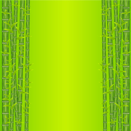 Green bamboo background. Vector illustration. Freehand drawing