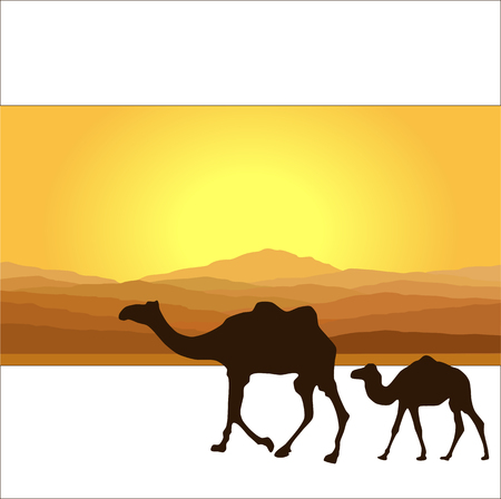 camel silhouette: Caravan with camels in desert with mountains on background. Vector illustration