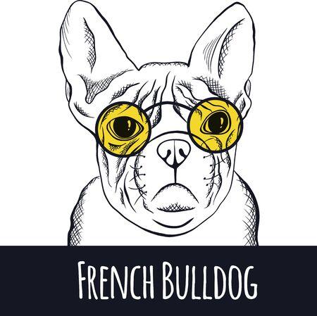 dog pen: Hand drawn portrait of french bulldog. Vector Illustration Stock Photo