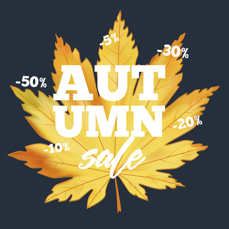 Sale banner with colorful seasonal fall leaves 写真素材 - 122676801