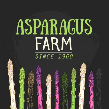 Organic asparagus farm hand drawn