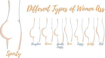 Different types of women ass vector illustration Ilustração