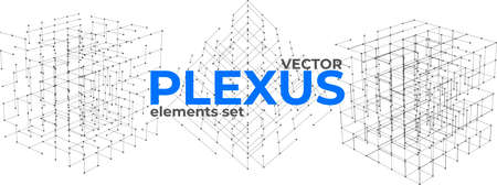 Abstract plexus design elements set. Geometric structures from dots and lines. Polygonal plexus elements isolated on white background.