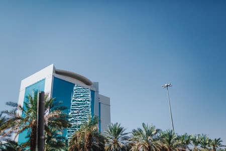 Sky and palm trees. Saudi Arabia Riyadh landscape - Riyadh