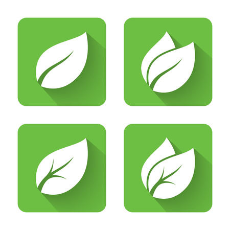 flat leaf: Flat leaves icons. Vector illustration