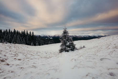 A snow a covered field a mountain