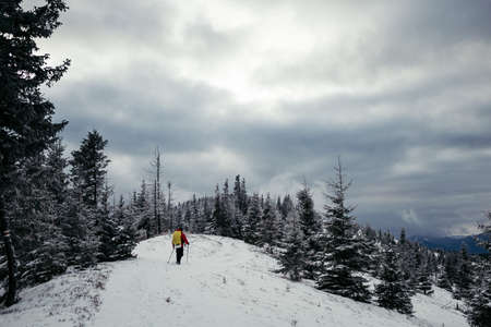 A man riding skis down a snow covered slope Stockfoto
