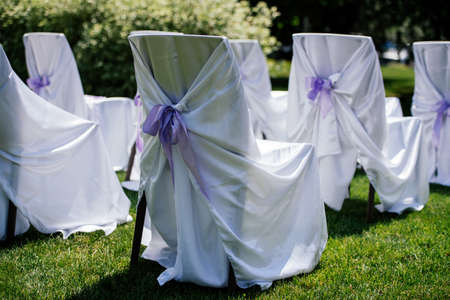 formal dinner party: Chairs for the ceremony with white satin cape and purple ribbon on a green grass Stock Photo