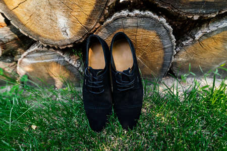 shoelace: Groom shoes on the grass under a pile of logs Stock Photo