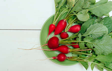Fresh organic red radishes on green plate on white wooden background. Top view. Vegetable background. Free space for text