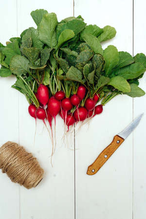 Top view of bunch of fresh organic red radishes with tops and green leaves, knife and rope on white wooden background. Vegetable background