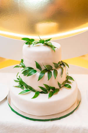 Elegant  white multi tiered wedding or birthday cake decorated with fresh green leaves on the table, free space Stock Photo