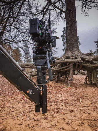 movie camera on mini crane in a mystical foggy forest near a very scary tree that is rooted on the surface