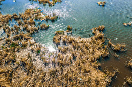 top shot. birds nest on the lake in the reeds on a may day. spectacular and very colorful sunset over the a lake glistens in the sun - Cityscape Aerial Flight Foto de archivo