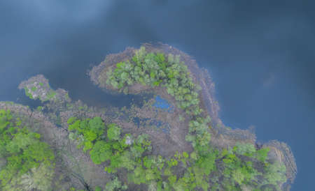 top shot. small peninsula. the river and its canals surrounded by oaks. water is covered with algae - Aerial Flight Foto de archivo - 150015786