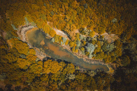lake surrounded by yellow autumn forest. top view of a mysterious lake covered with green algae - Aerial Flight Foto de archivo