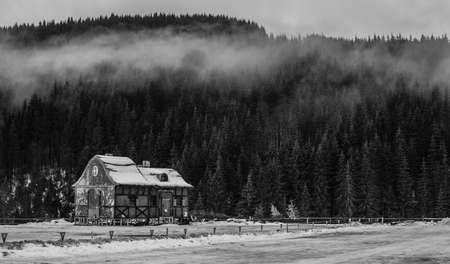 The decoration of the house mysteriously stands on a mountain in a pine forest. cozy house in a mountain forest. foggy forest
