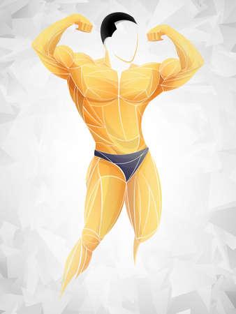 Bodybuilder Fitness Model. Stylized, geometric athlete, strongman vector