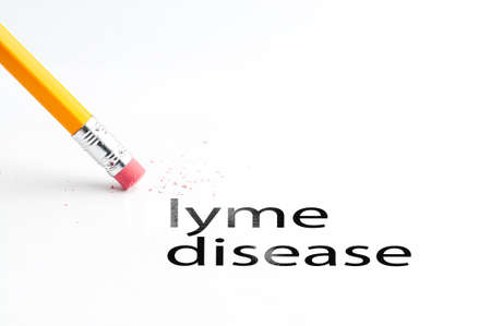 lyme: Closeup of pencil eraser and black lyme disease text. Lyme disease. Pencil with eraser.