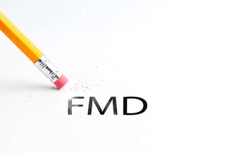 dysplasia: Closeup of pencil eraser and black FMD text. FMD. Pencil with eraser. Stock Photo
