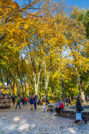 Taras Shevchenko Park (Green Building) is located at the University of Kyiv. Vladimirsky in the city of Kiev. Has the status
