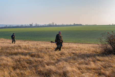 Hunters are looking for a hare in the autumn steppe. Zaporizhzhya region, Ukraine. November 2019 Редакционное