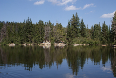bear lake: Scenic view of the trees and the lake, Bear Lake, Rocky Mountains National Park, Colorado
