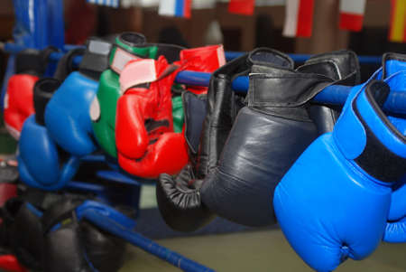 boxing gloves of different colors hang on the ropes of the boxing ring