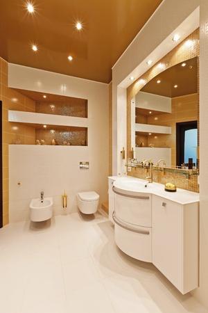 Interior hermoso apartamento moderno Foto de archivo - 11550127