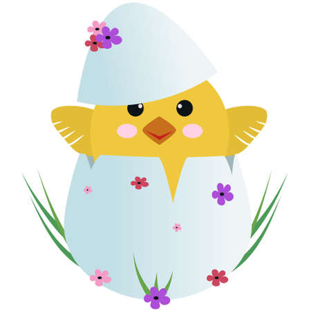 Funny cute yellow chicken in egg with flowers and grass. Cartoon character design, flat vector illustration Illustration