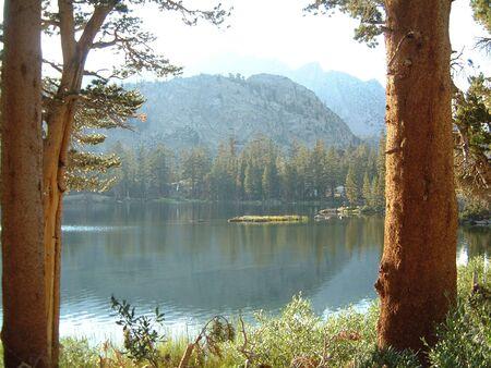 lake framed by trees Reklamní fotografie