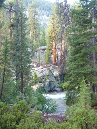 pacific crest trail: Sierra hiking, river glimpsed through trees