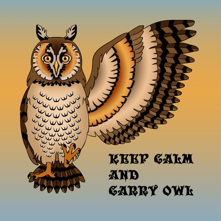 keep calm and carry on: Wise owl lifted wing and paw