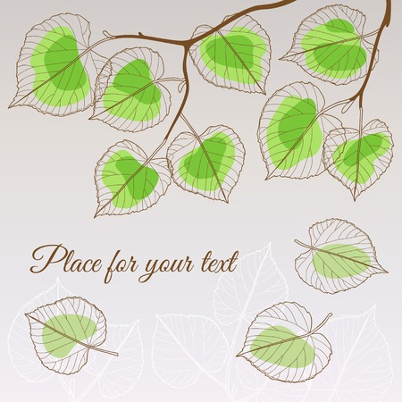 linden: Abstract transparent linden leaf green style with place for your text