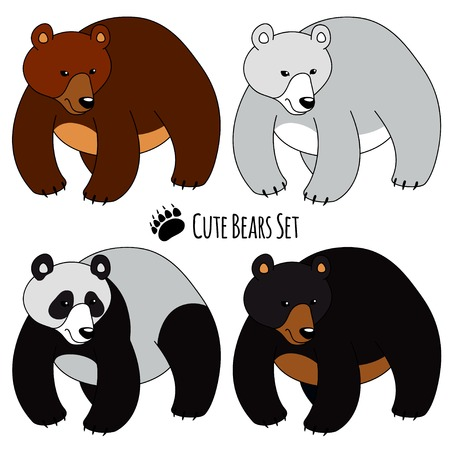 Set of Four Bears, isolated. Brown, White, Panda and Grizzly Vector