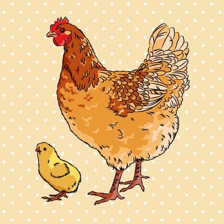 Pollo pollo y el bebé clueca realista, aislado