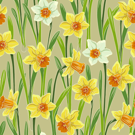jonquil: Yellow white jonquil daffodil narcissus seamless pattern, beige background