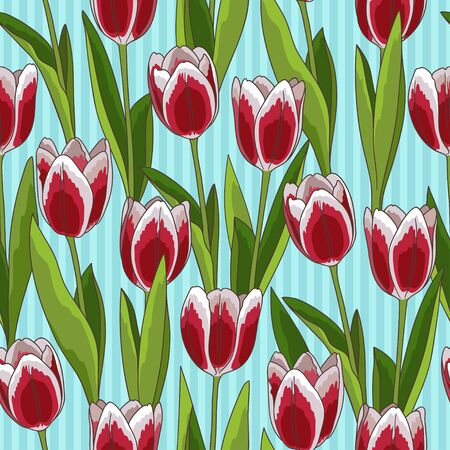 Red tulip flower spring seamless pattern or background, blue background Illusztráció