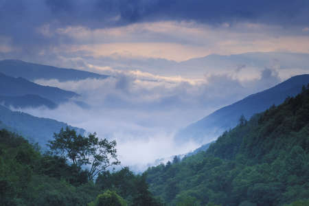 great smoky national park: Summer storm approaching Newfound Gap in the Great Smoky Mountains National Park
