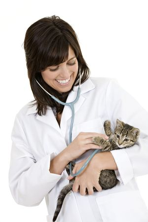 Beautiful Caucasian woman Veterinarian examining a kitten 免版税图像
