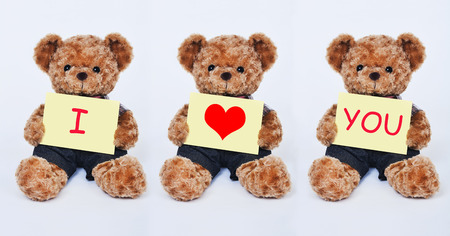 A cute teddy bear holding a yellow sign that says I Love You isolated on a white background