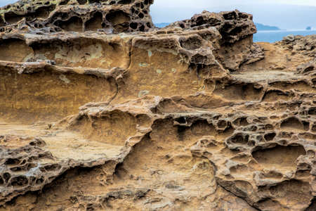 Honeycomb weathering patterns in the limestone within the Yehliu Geological Park known to geologists as the Yehliu Promontory, forms part of the Daliao Miocene Formation. New Taipei, Taiwan, China