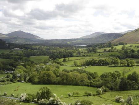 newlands: Newlands Valley
