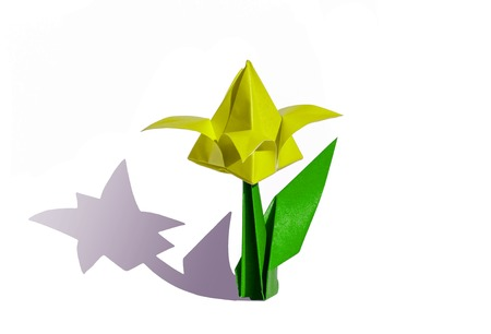 Origami tulip flower.  The tulip is isolated on white background and casts shadow on the surface. It has closed or open petals and a green stalk. photo